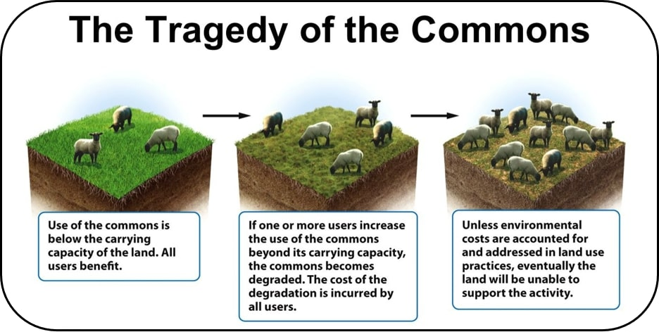 Figure 1:  A Pictorial Representation of 'The Tragedy of the Commons' Environmental Conundrum