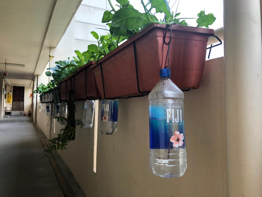 Watering System Installed for the Potted Plants